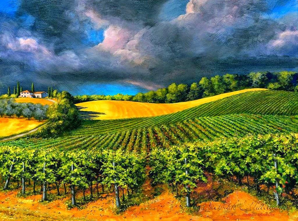 panoramas-con-cultivos-agricolas
