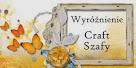 Wyróżnienie w Craft-Szafie