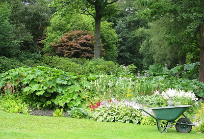 Wheelbarrow on the lawn next to a flowering border
