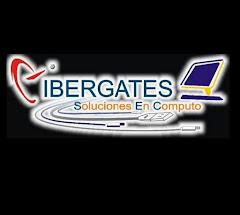 CIBERGATES: