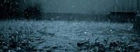 Rain Mưa