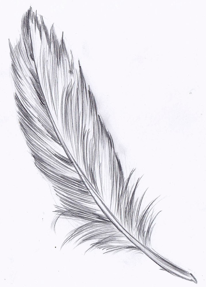 Drawspace lesson I06: How to draw a feather