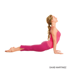 PhilosophyFit: Yoga Poses for Your Shoulders