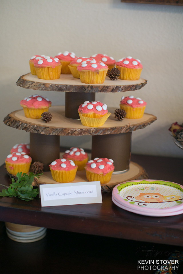 we three mothers woodland theme baby shower the food