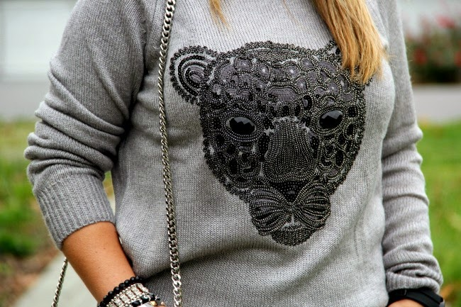 Gray Jaguar Sweater from H&M