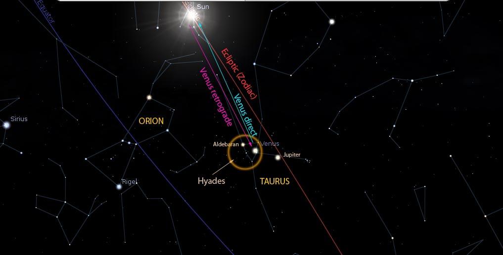 Venus Constellation