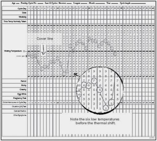 basal body temperature chart template.html