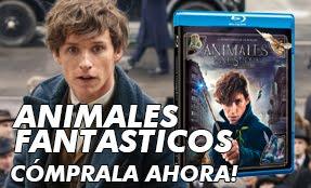 Animales Fantásticos en Blu Ray