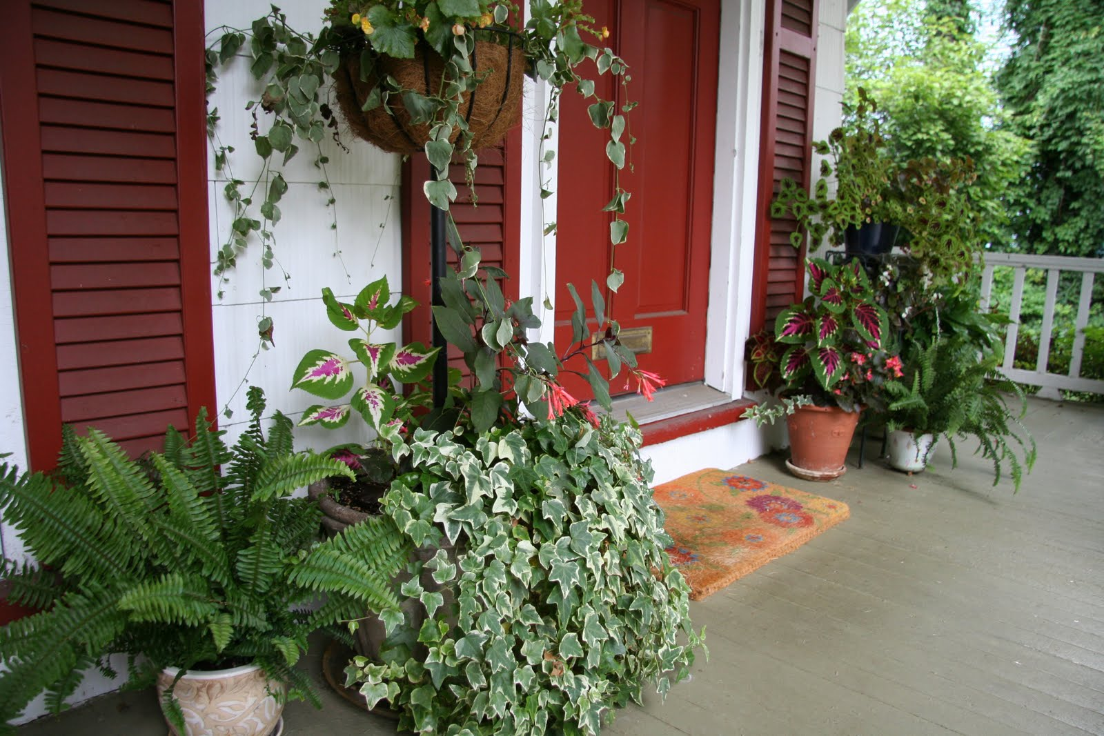 Ash tree cottage potted plants for porches for Outdoor decorating with potted plants