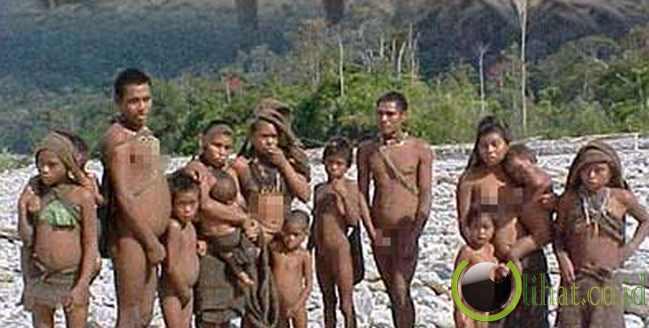 Suku Nanti Suku Pribumi