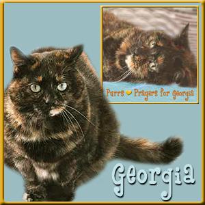 POP Georgia