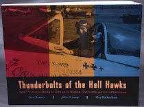 Thunderbolts of the Hell Hawks - 365th FG book review