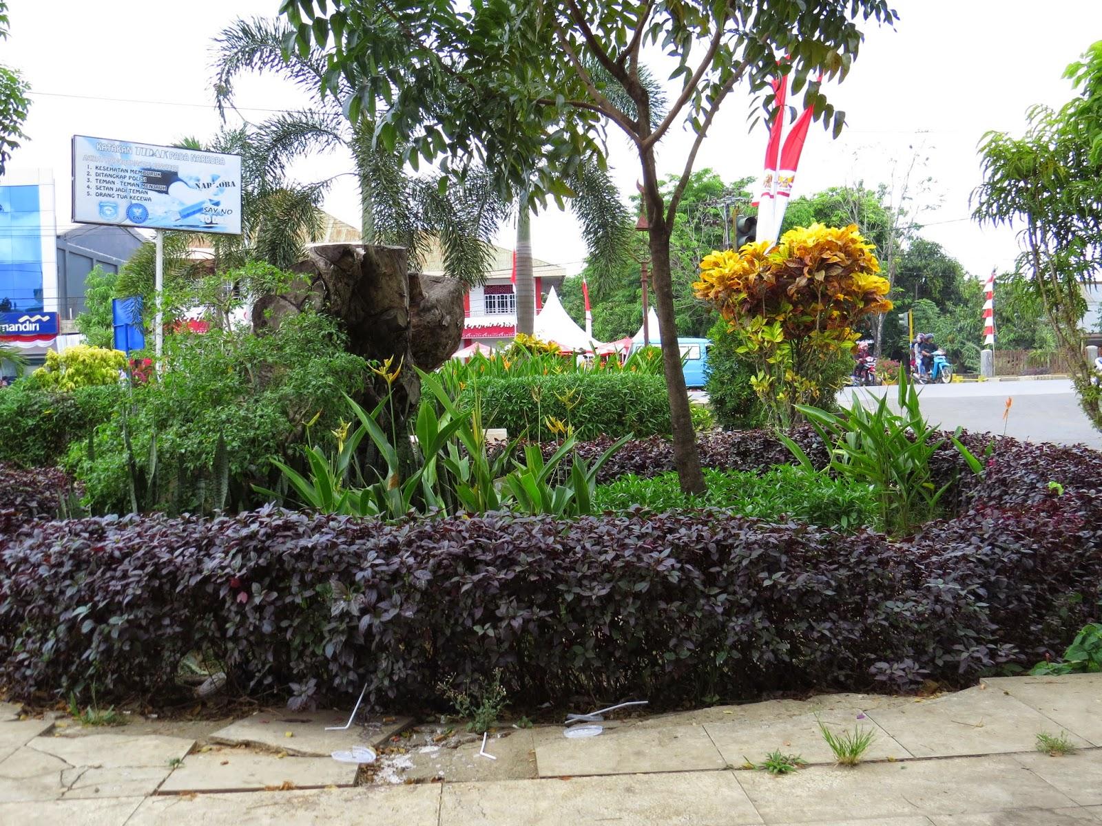 Bunga Di Taman Musafir