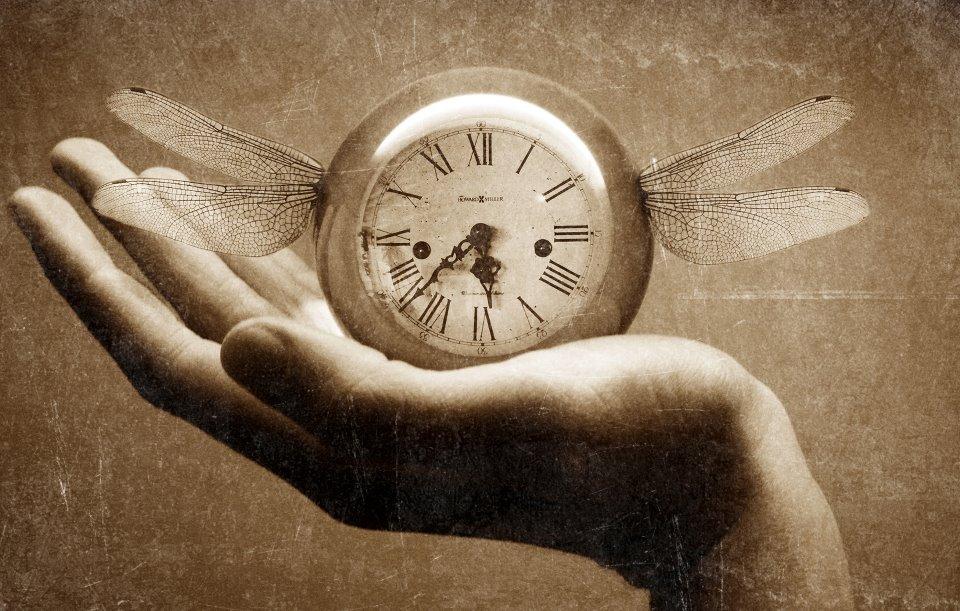 Tiempo Literario