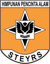 STEYR'S