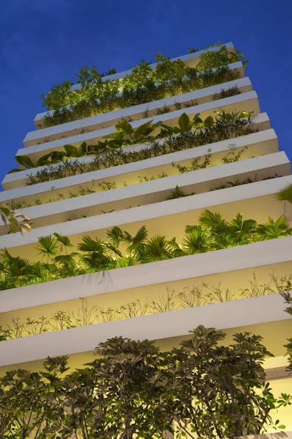 Дом в растениях