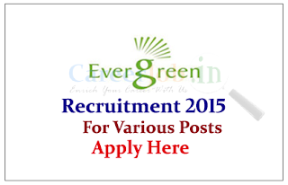 Evergreen Solar Systems India Pvt Ltd Recruitment 2015 for the various Posts