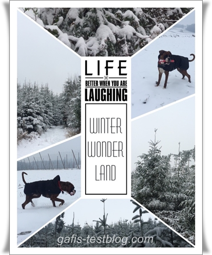 Winterliche Collage