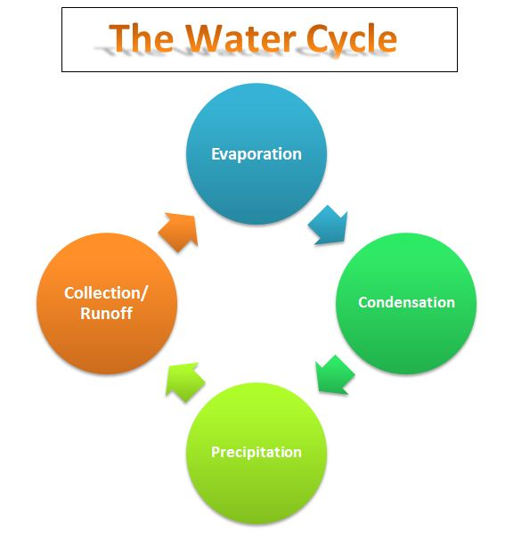 Bill Nye Video Water Cycle