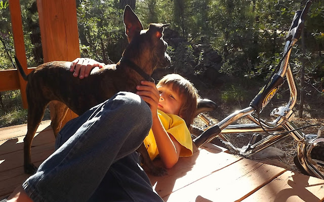 a boy and his dog, little boy and dog