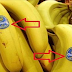 Be Careful What Are You Buying: Did You Know What Does The Stickers on The Fruits Mean?