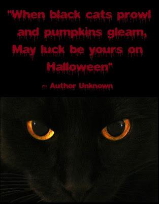 Halloween Black Cat Quotes