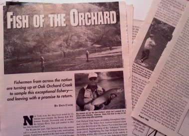 Dave 39 s fly bench oak orchard dreams for Oak orchard fishing report