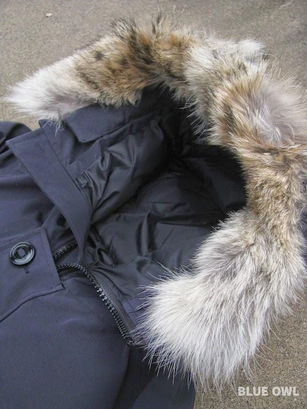 Canada goose black coyote fur hood chateau parka