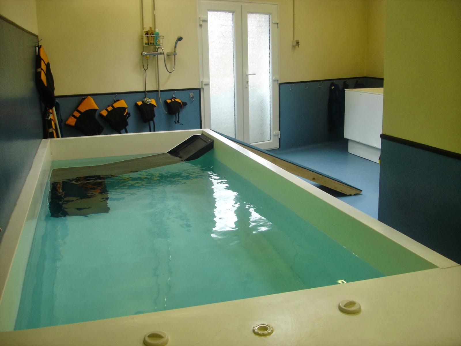 piscinas veterinárias