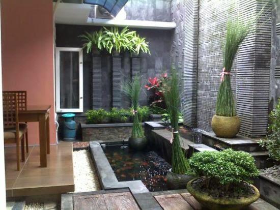 taman kolam ikan belakang rumah