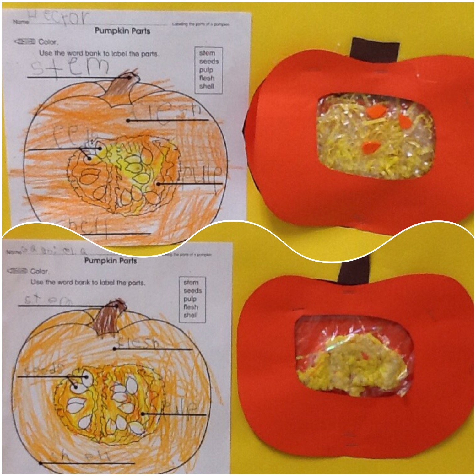 "... the inside of a pumpkin as well as an example of what the inside of a  real pumpkin would look like. (They used hair gel to give it that ""slimy""  look)."