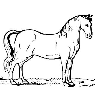 Desenhos Preto e Branco Cavalos bonitos e treinados do sitio Colorir