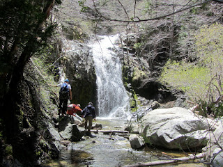 Cooper Canyon Falls, Angeles National Forest