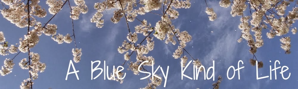 A Blue Sky Kind of Life