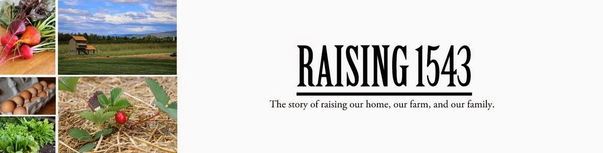 Raising 1543