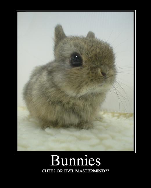 sexy jokes Funny easter bunny