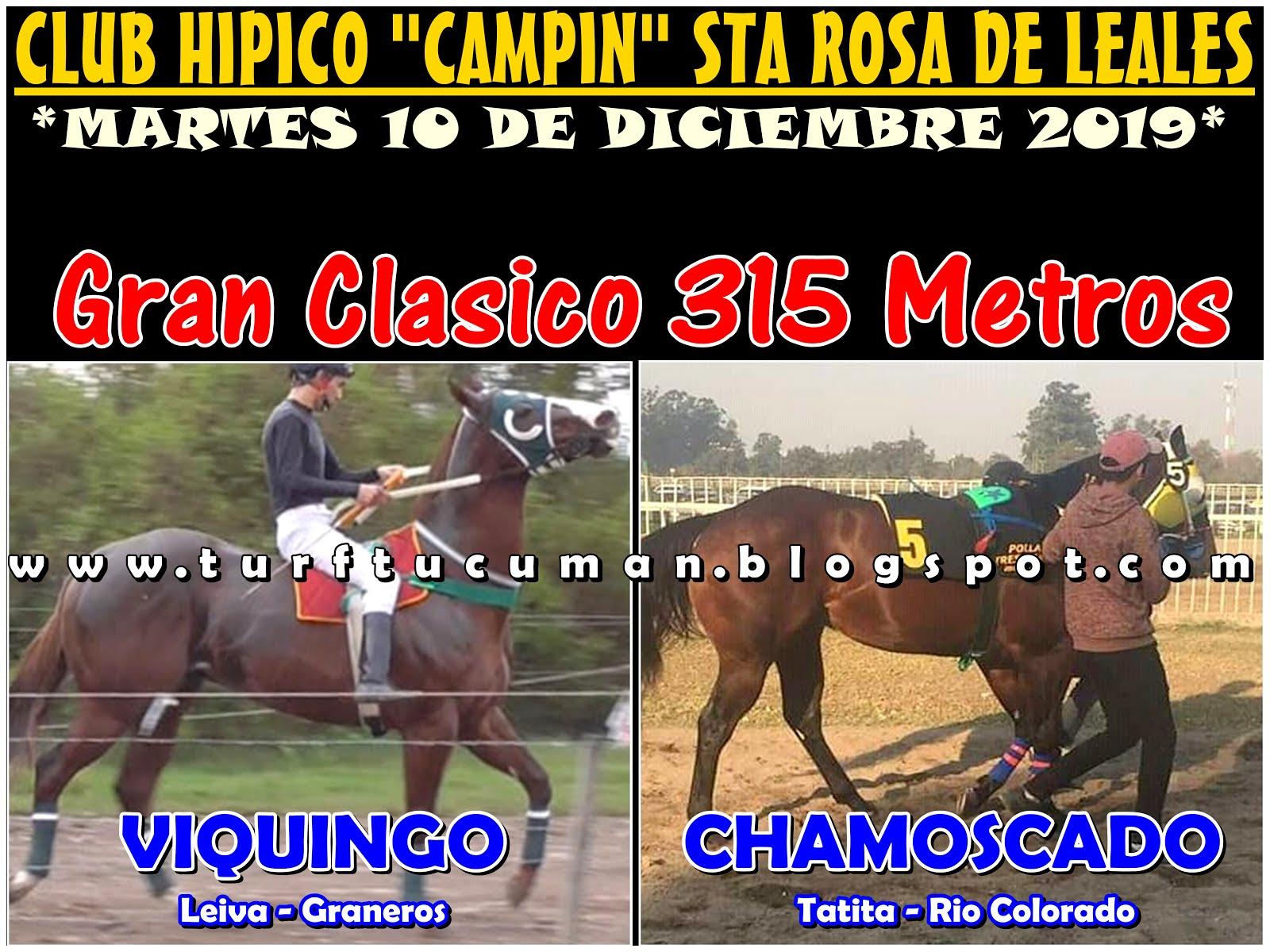 VIQUINGO VS CHAMOSCADO