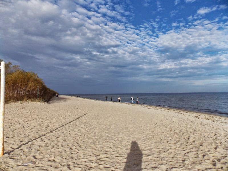 Plaża w Rewie