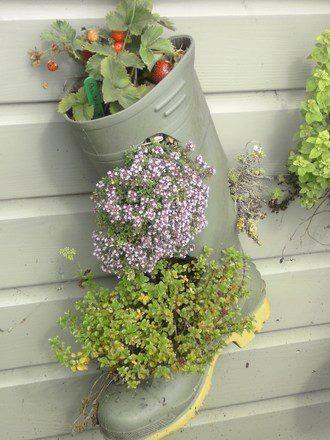 Mon jardin fleuri: Recylage objets pour décoration jardin