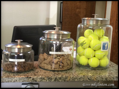 Jars of cat treats, dog treats and tennis balls