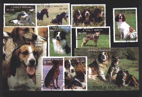 1995年サントメ・プリンシペ民主共和国 サルーキ バセット・ハウンド イングリッシュ・スプリンガー・スパニエル ビーグル ボーダー・コリー ジャック・ラッセル・テリア セント・バーナード バーニーズ・マウンテン・ドッグ その他 犬種不明などの切手