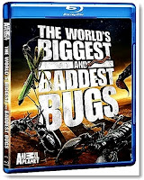 The World's Biggest And Baddest Bugs 2009