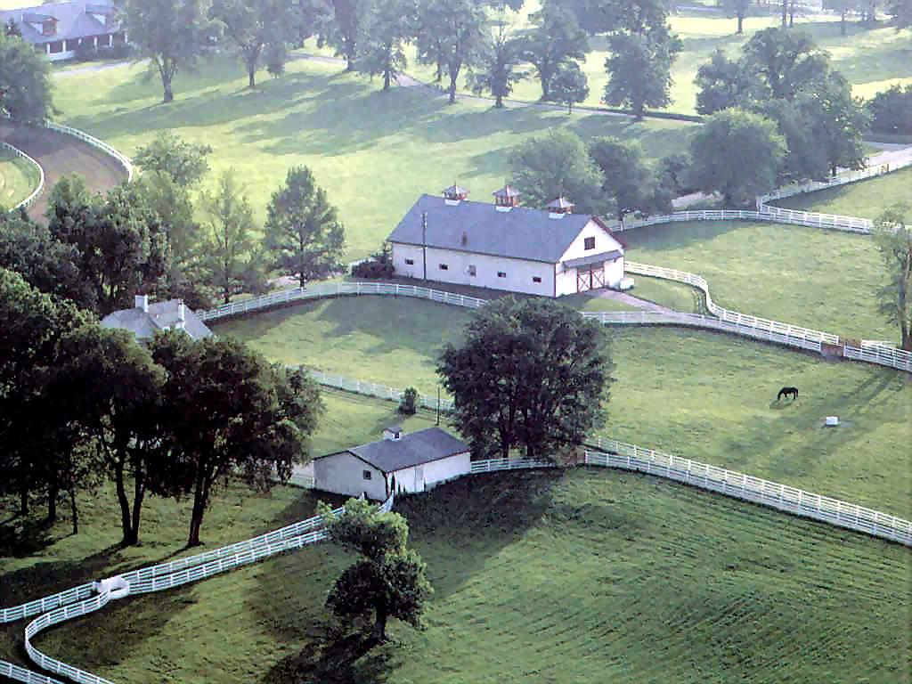 Horse country chic calumet farm for Horse farm