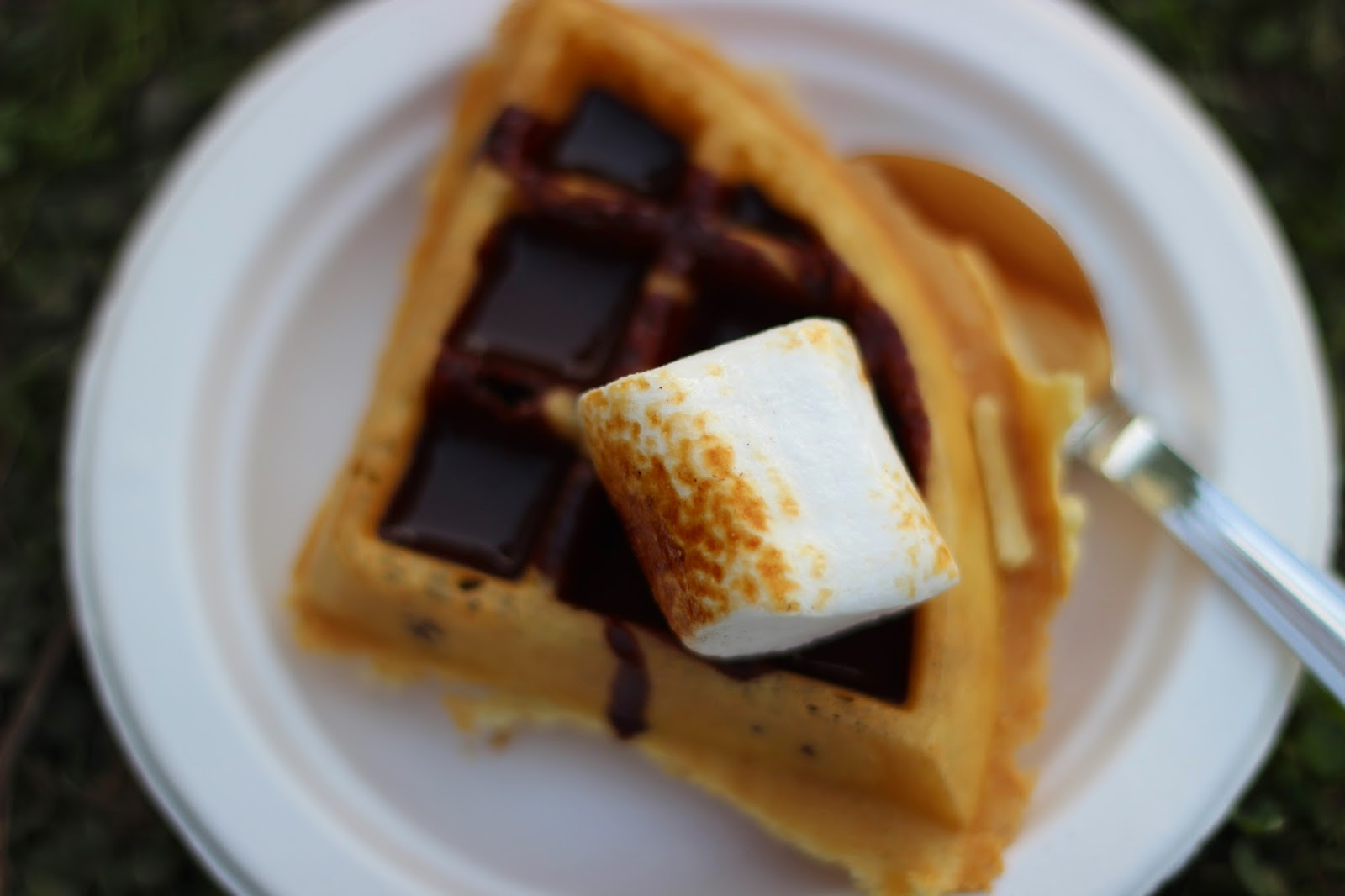 marsh mellows, Palate Fest 2014, food festival, waffles, drool