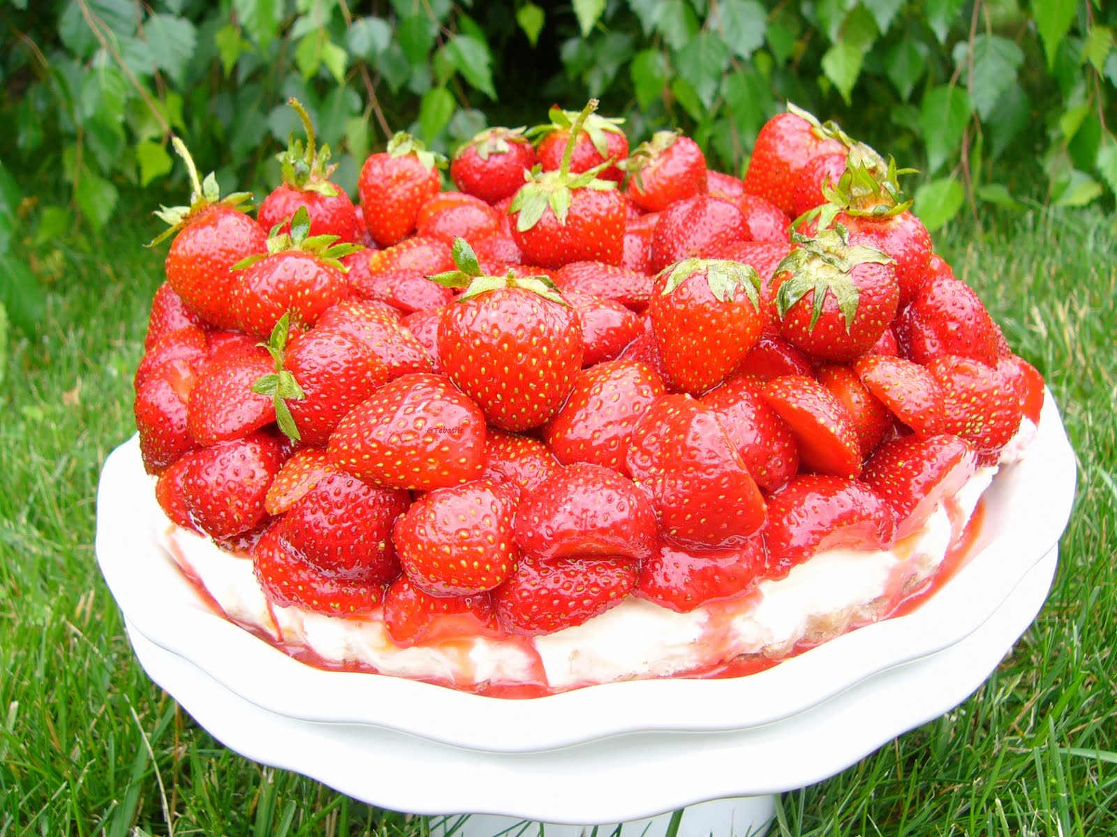 Strawberry Cake Thermomix