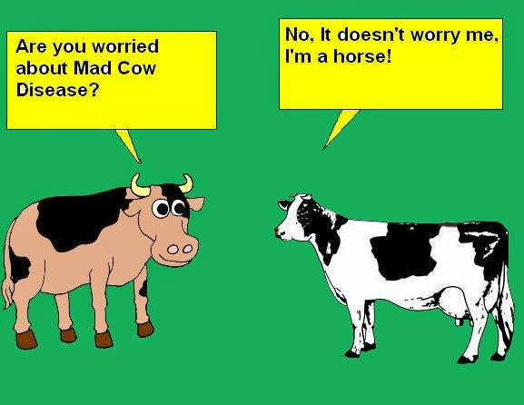 are you worried about mad cow disease?