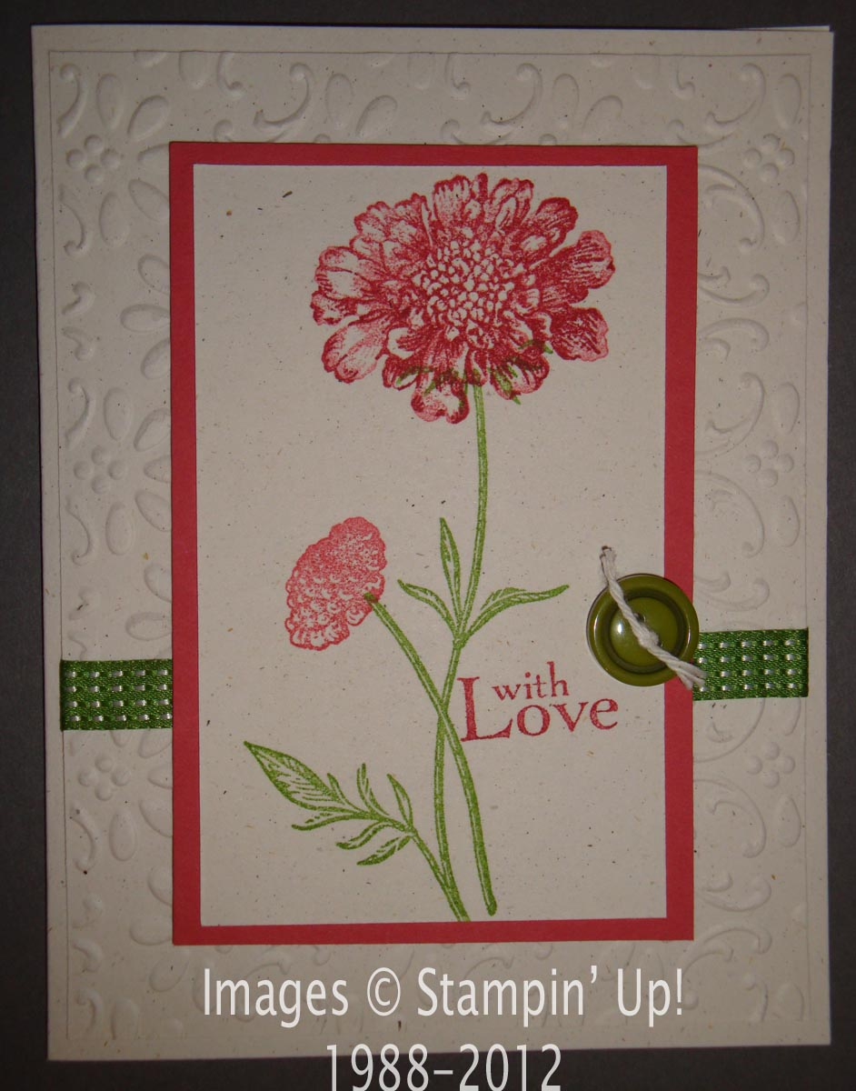 Jayne stamps field flowers sympathy but if you need to make a sympathy card just choosing some more muted colors and adding an appropriate greeting makes a world of difference kristyandbryce Image collections
