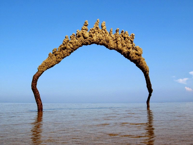 Striking Sea Sandcastles