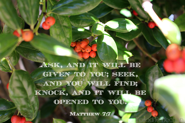 Food for the Soul ~ Mattheew 7:7