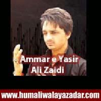 http://ishqehaider.blogspot.com/2013/11/ammar-e-yasir-ali-zaidi-nohay-2014.html